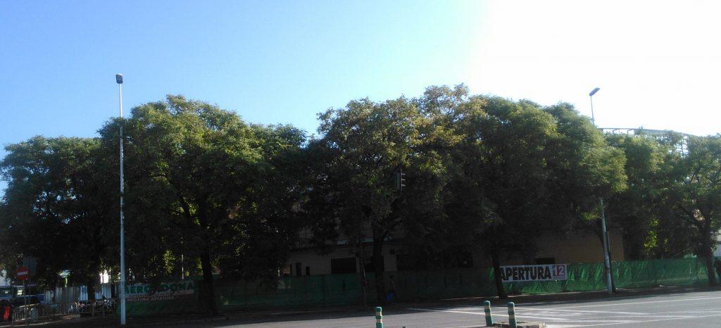 mercadona-plaza-de-amas-antes-012